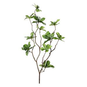 DEKORAČNÍ LIST 66 cm - zelená