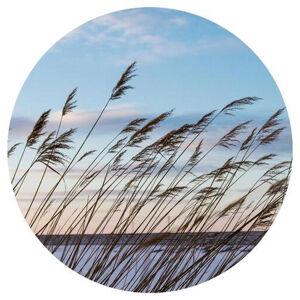 Monee OBRAZ NA SKLE, krajina & příroda, - modrá